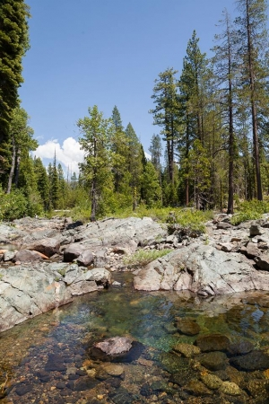 Help Raise Funds to Protect the Headwaters of the Middle Fork American